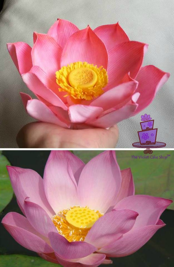 Gumpaste Lotus for Super Cake Moms Collab - 05-11-14 - twmpm