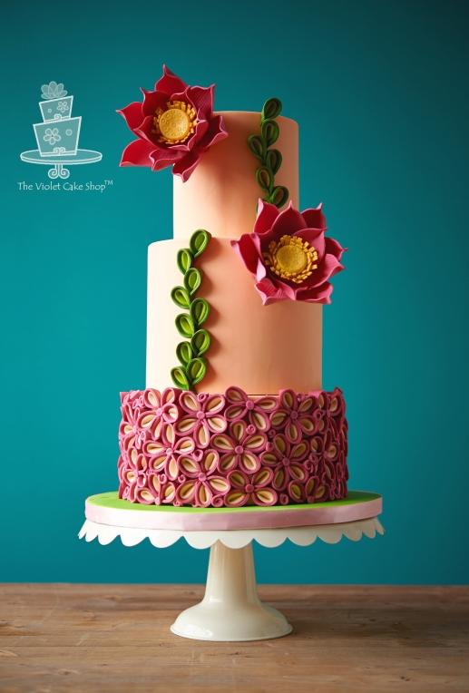 5167 Vivid Cakes-018 - twmgimp